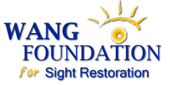 Wang Foundation for Sight Restoration